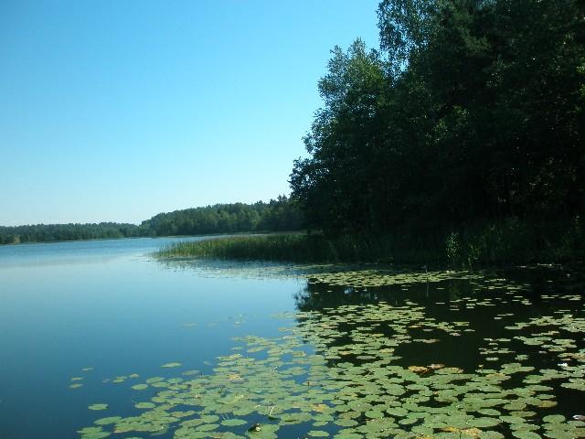 рыбалка озера невельского района