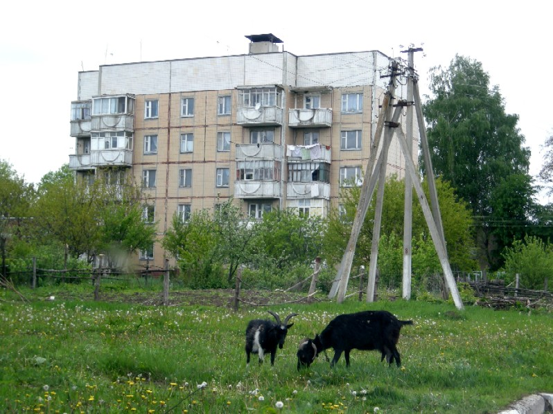 Батрацкая дача белгородская область фото