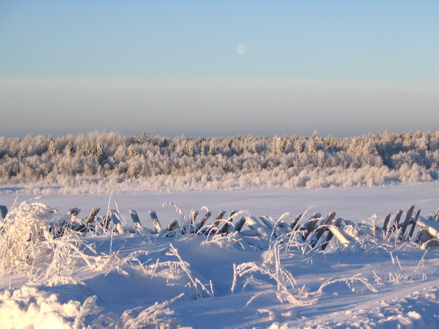 зима воронеж фото