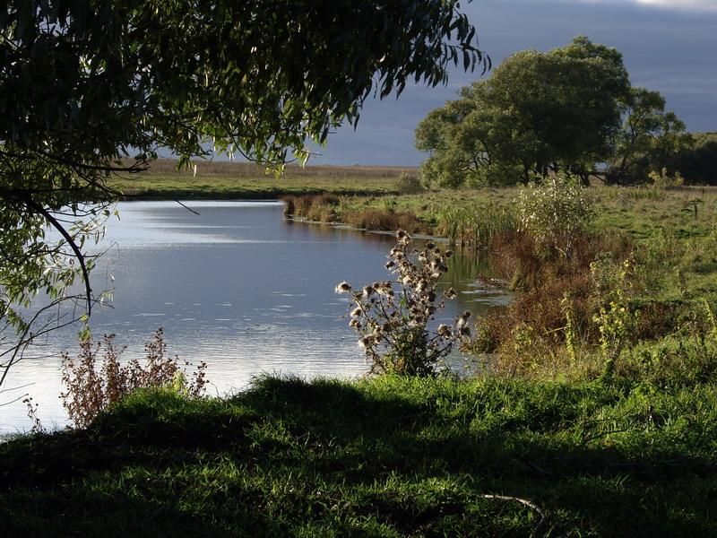 рязанская область шацкий район рыбалка на реке цна форумы отчеты