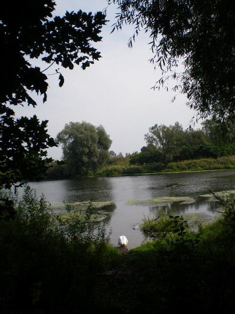 Тульская область веневский район