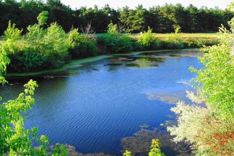 Россия реки озера отдых экскурсии