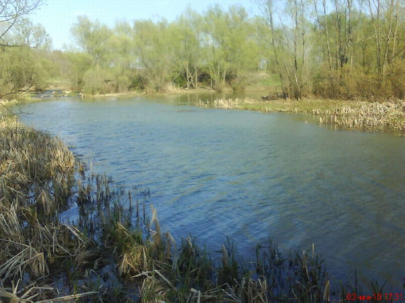 озера рязанской области и рыбалка на них