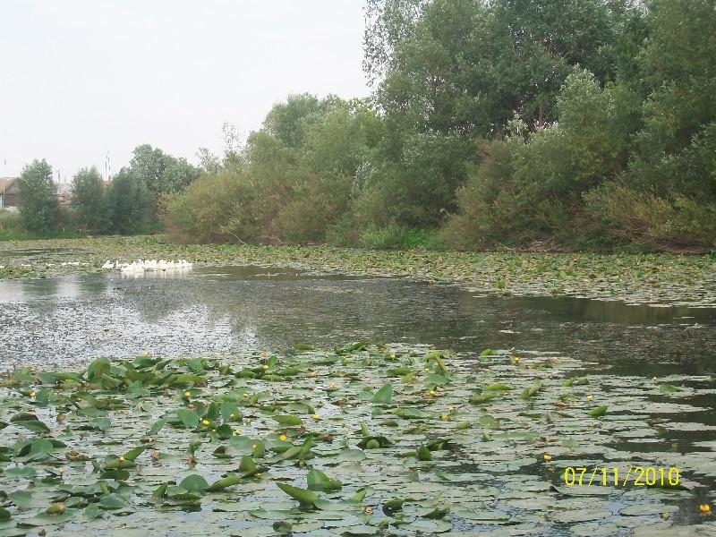 Россия реки озера ландшафты природа