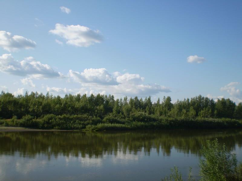Россия ландшафты река чумыш алтайский