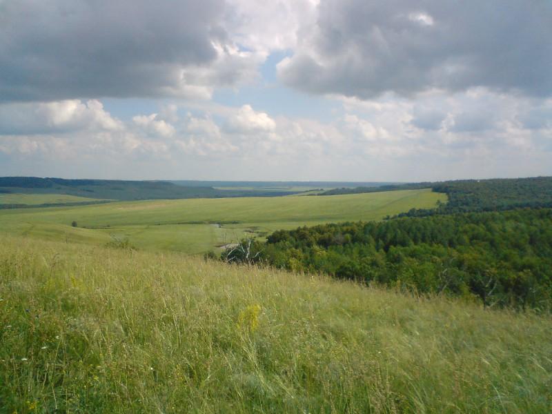 Николаевский сельсовет саракташского района оренбургской области